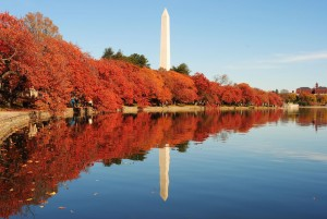 DC Fall Pic 1